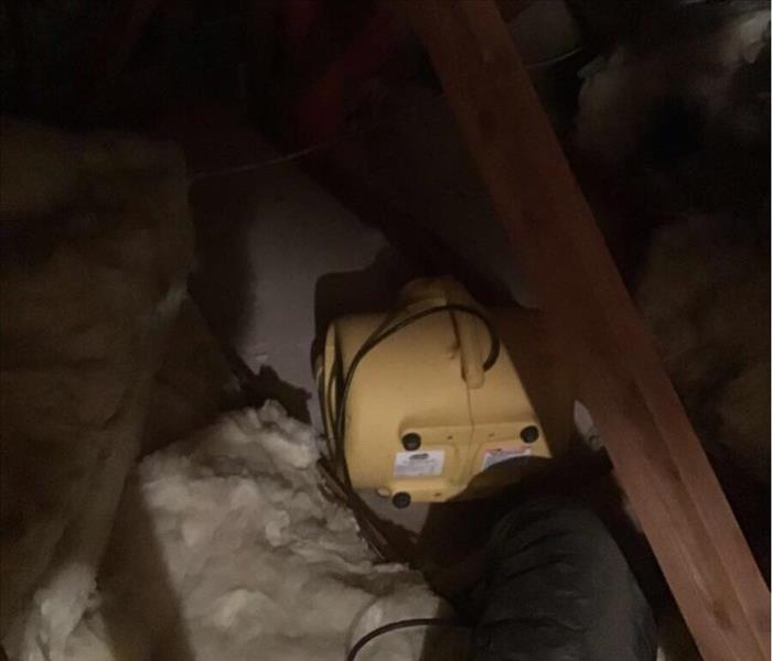attic water damaged insulation